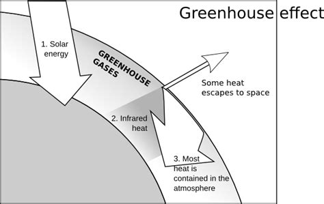 Greenhouse Effect Worksheet High School by Greenhouse Effect Clip At Clker Vector Clip
