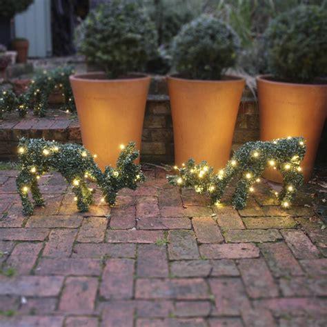 deer topiary topiary deer with led lights by ella