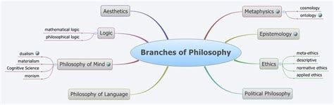 i am not a brain philosophy of mind for the 21st century books branches of philosophy xmind library