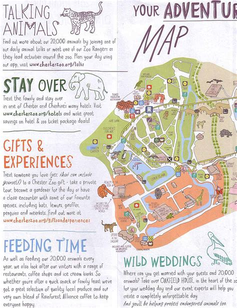 discount vouchers chester zoo chestertourist com chester zoo 3