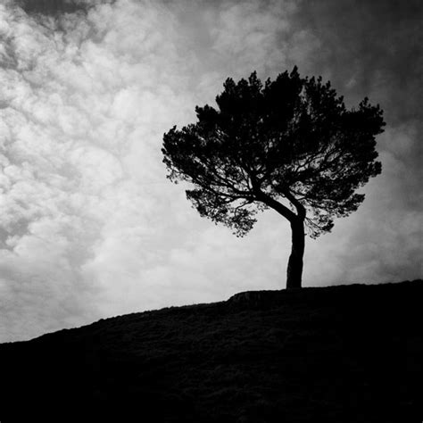 black white silhouette photography 10 tips for creating powerful black white iphone photos