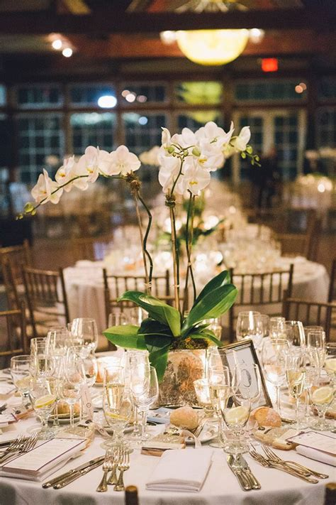 best 25 white orchid centerpiece ideas on