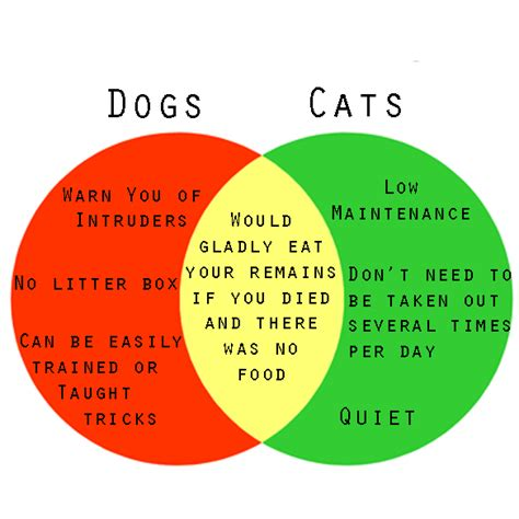 dogs or cats a venn diagram to help you decide if you should get a or a cat thought catalog