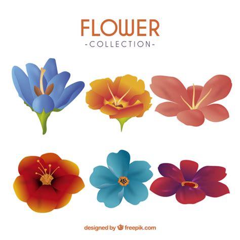 imagenes de varias flores varias flores coloridas en estilo realista descargar