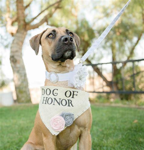 Dog of Honor   Wedding Dog Bandana with Flowers   Dog