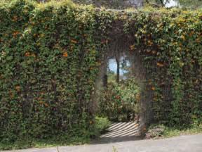 Kula Botanical Gardens Kula The Middle Of Nowhere Destination In Hawaii You Must