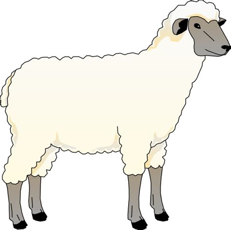 Clipart Of A Sheep free to use domain sheep clip