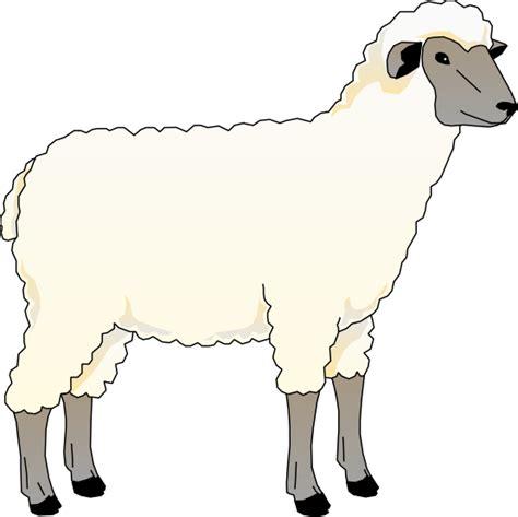 Free Clipart Sheep free to use domain sheep clip