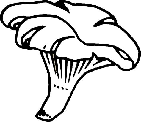 imagenes de hongos faciles para dibujar magenes de hongos para colorear imagui