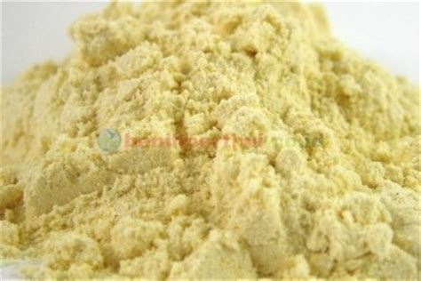 Benih Jagung Ketan membuat tepung jagung maizena benih pertiwi