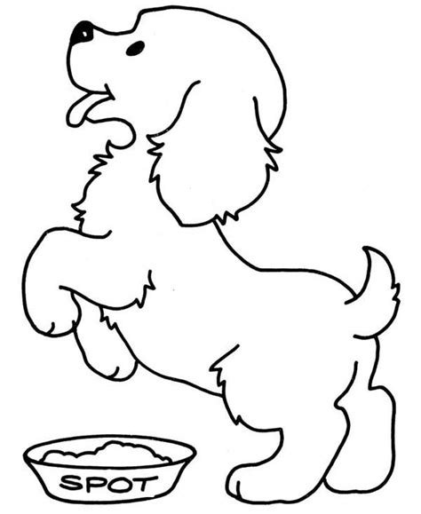 color dogs and cats cute cat and dog coloring pages