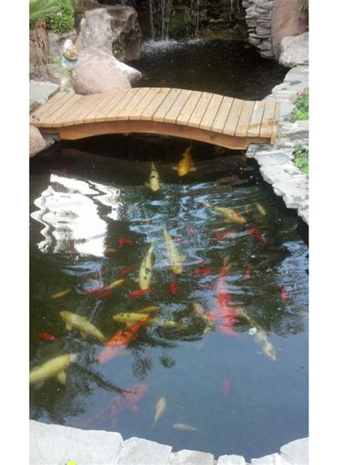 Ponds And Waterfalls For The Backyard Koi Pond With Bridge Pacific Ponds And Design