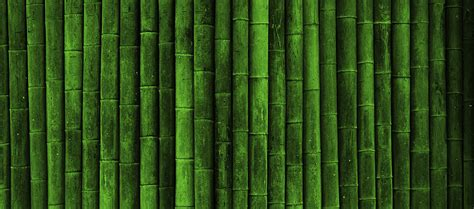 Green Covers by Bamboo Wall Cover Timelinecoverbanner