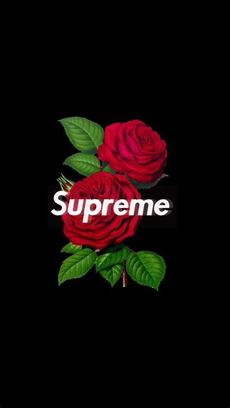 supreme rose wallpaper iphone