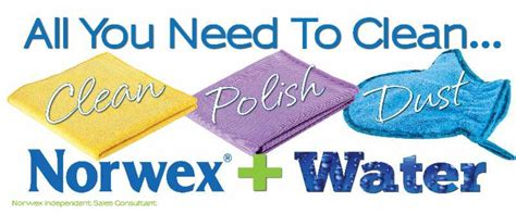 spring cleaning flyer norwex other other