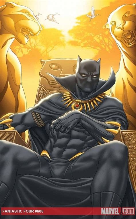 marvel s black panther prelude books 86 best marvel black panther images on black