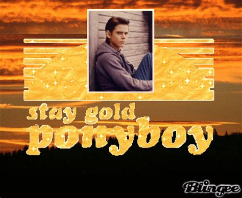 love themes in the outsiders stay gold ponyboy memes