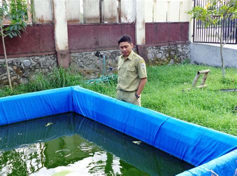 Harga Terpal Kolam 3x4 jenis ikan lele budidaya untuk konsumsi september 2015