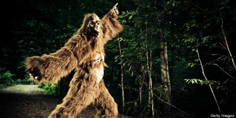 best bigfoot best states for bigfoot the best places to spot the