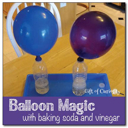 Hair Dryer Air Balloon Experiment balloon magic with baking soda and vinegar gift of curiosity