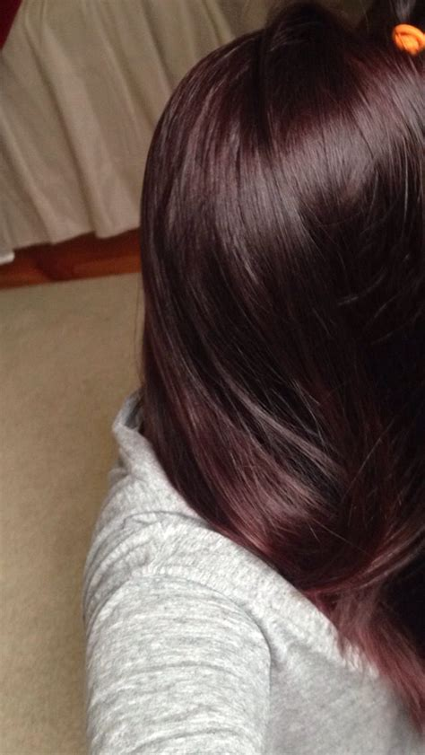 what hair dye color is plum brown diy plum burgundy hair dark brown hairs of plum brown hair