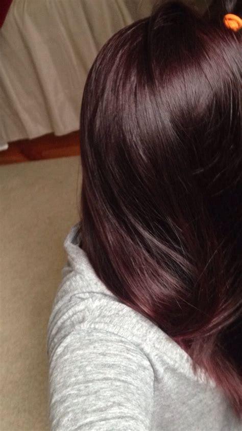 brown plum hair color dark plum brown dark brown hairs