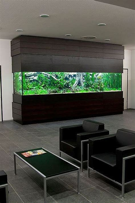modern aquarium best 25 aquarium design ideas on pinterest aquarium