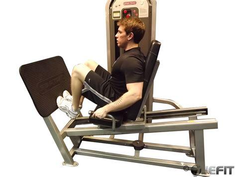 seated calf press dumbbell seated calf raise exercise database jefit