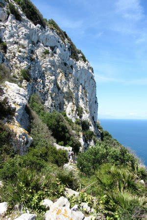 Gibraltar Phone Number Lookup Mediterranean Steps Gibraltar Europe Top Tips Before You Go With Photos