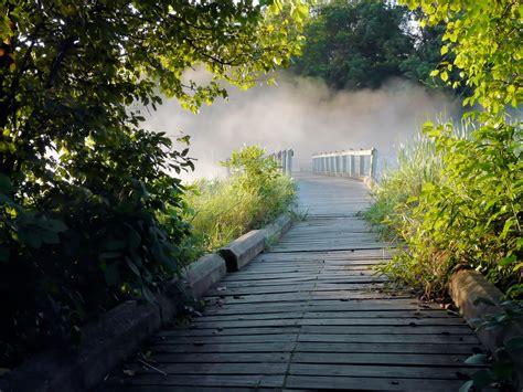bitcoin fog tutorial fog on the wooden bridge walkway image free stock photo
