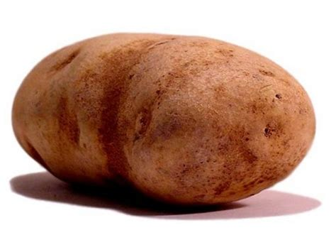 Potato Free free potato clipart pictures