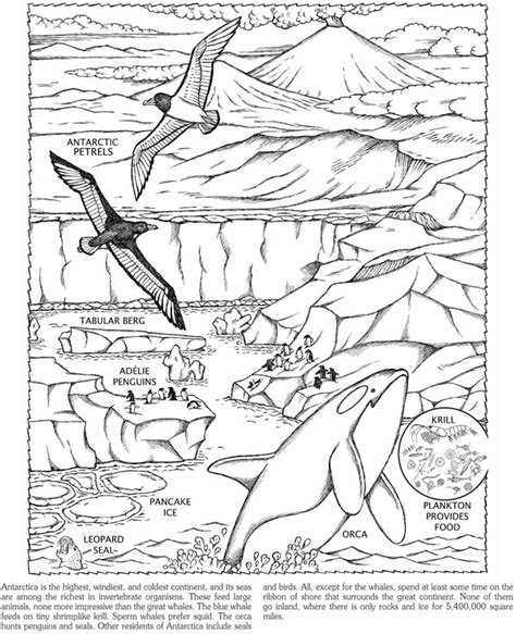 Antarctica Coloring Pages free coloring pages of map of antarctica