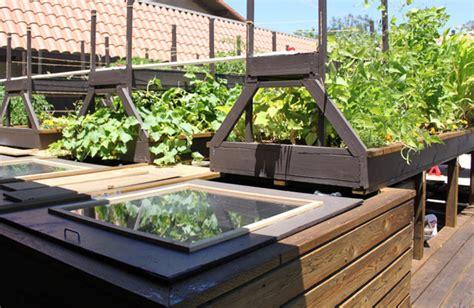 Aquaponics Gardening Aquaponic Gardening The Advantages Aquaponic Vegetable Garden