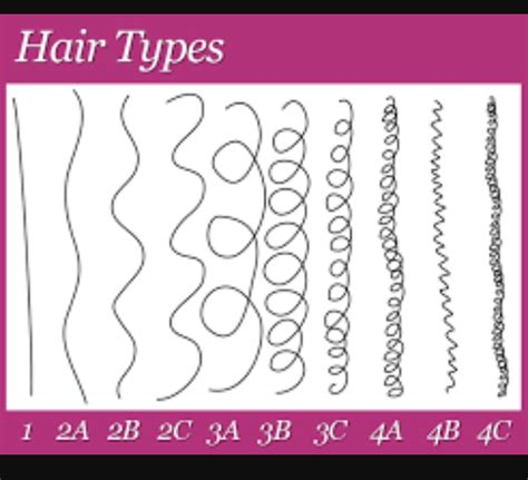Types Of Hair Strands by Mcsm Rage Curly Coily Us