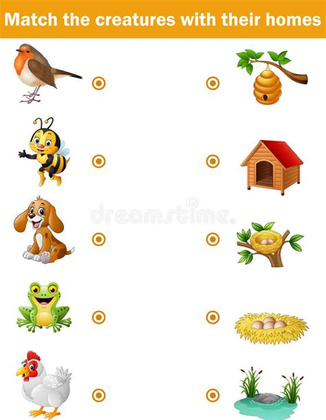 their home animals and their homes www pixshark com images