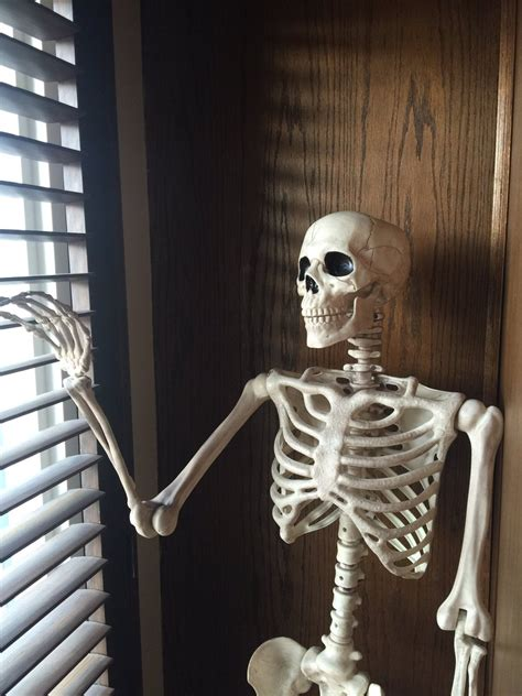 waiting  tinyco  answer  query  send