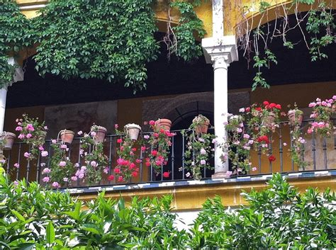 how do you say backyard in spanish garden travels lessons from spanish gardens old house