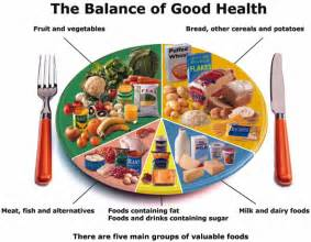 Balanced Food For Healthy Essay by Gardens Of Knowledge Science Form 5 Notes