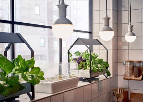 ikea krydda vaxer usa ikea turns its sights on sustainable products