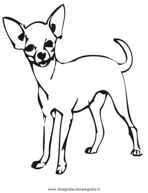 coloring pages chihuahua dogs 10 best hundefarger images on pinterest chihuahuas