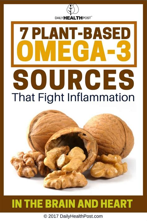 healthy fats co omega 3 vegetarian foods rich in omega 3 fatty acids list