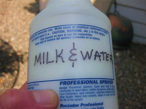 spot remedy got blackspot get milk