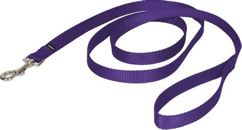 puppy leashes petsafe premier leash purple medium 6 ft chewy