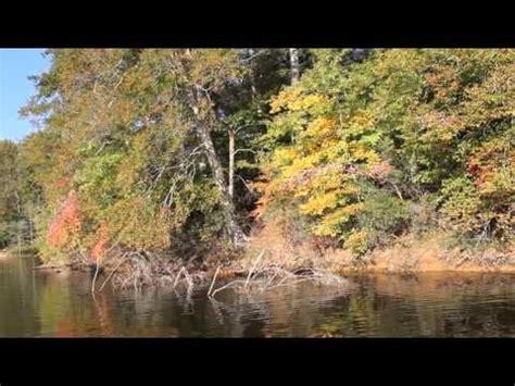 How Catfish Finds Alabama Catfish Trail 1st Stop Of 2016 Wheeler 3 12 16 Funnydog Tv