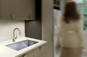 Pull Out Spray Kitchen Faucets undermount laundry sink mud room utility sinks by just
