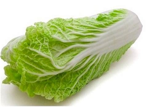 napa cabbage article gourmetsleuth