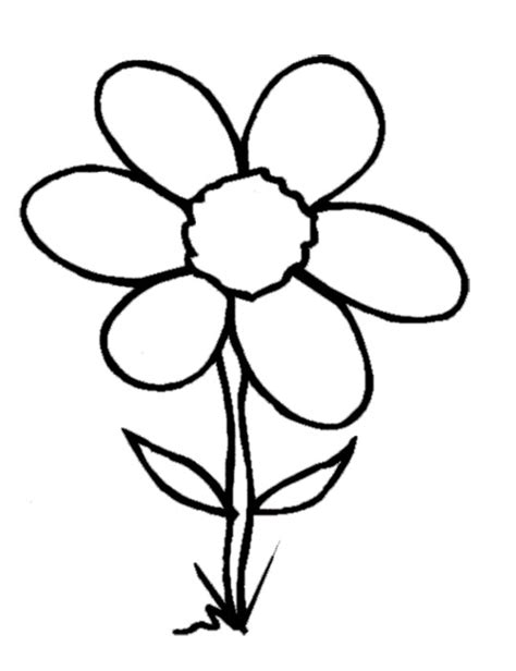 Flowers Coloring Book Clipart