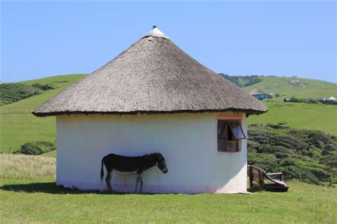 xhosa hutte a finding some shade a traditional south