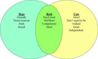 Compare And Contrast Dogs And Cats Essay pa distance learning project tip of the week compare and contrast