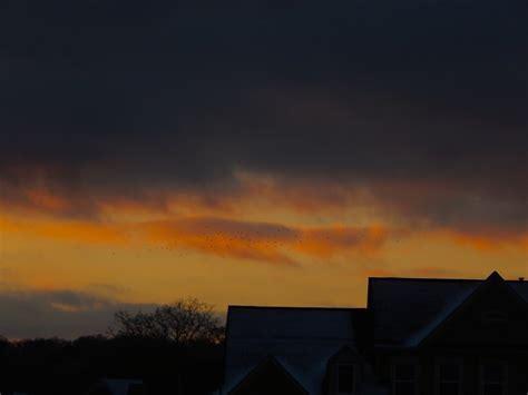 backyard sunset backyard sunset 57 snow sunset by superseether on deviantart